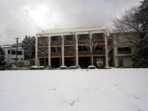 P4_snow01