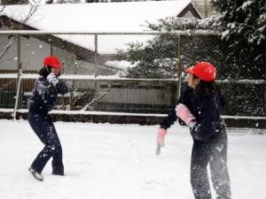 P4_snow09
