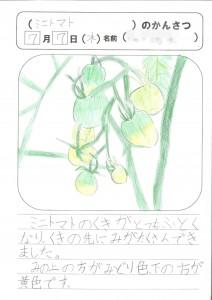 新規スキャン-20160722143111-00001